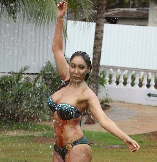 Sofia Hayat Holi 2015 Pictureshoot in Bikini Pictures 10.jpg