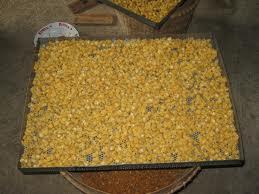 hasil-pembuatan-makanan-ringan-marning