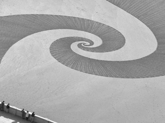 مدهشة لرسوم عملاقة شواطئ كاليفورنيا