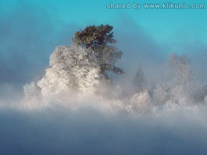 http://2.bp.blogspot.com/-ODWu_-YAobk/TX1jjWDx-hI/AAAAAAAARHY/84sDpVL7foM/s1600/winter_55.jpg