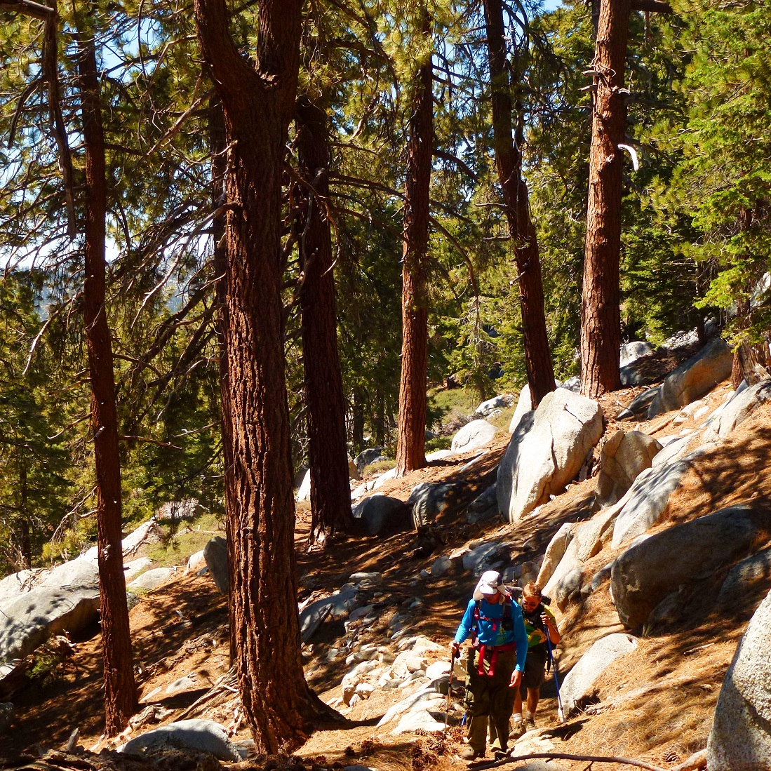Fort Ann Primitive Camping: Peaks For Freaks: Snow Creek Trail To San Jacinto (S2S