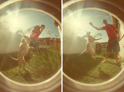 Fisheye + Friends