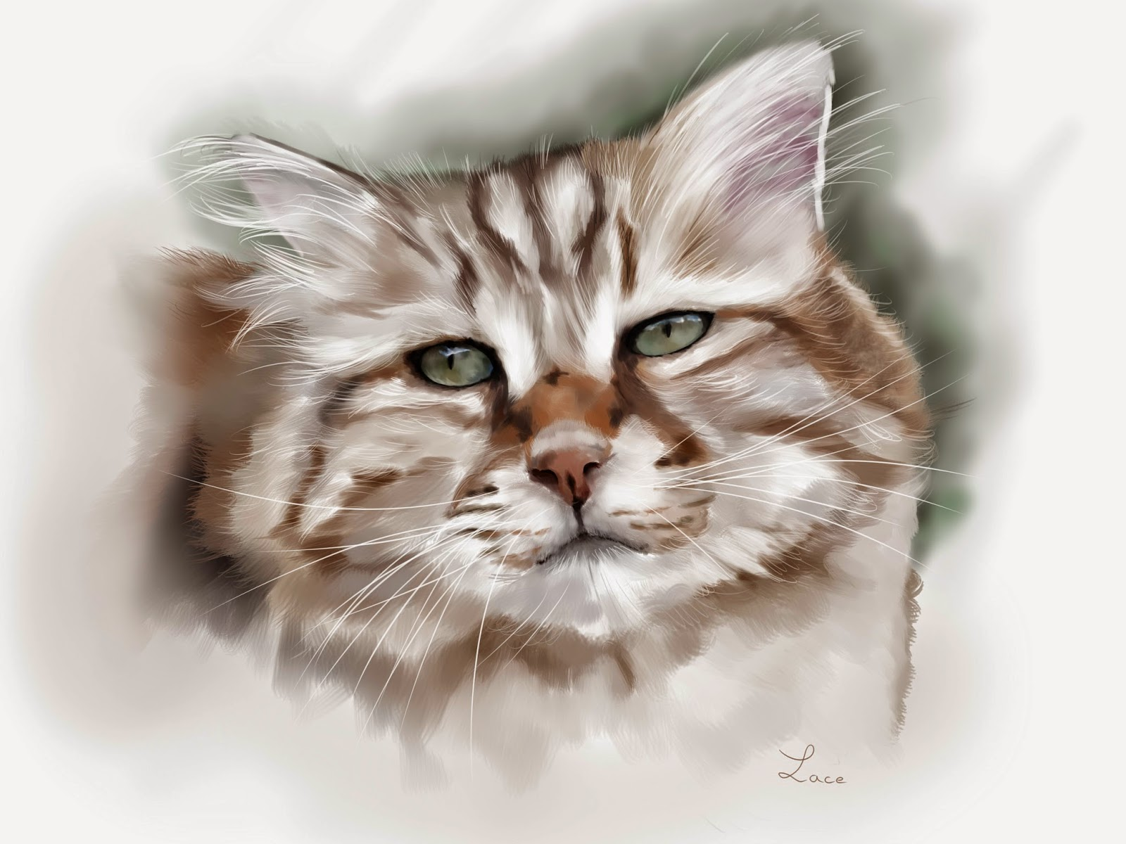 painting  drawing  wacom digital chat cat