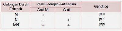 Reaksi Penggumpalan Eritrosit oleh Antiserum Kelinci