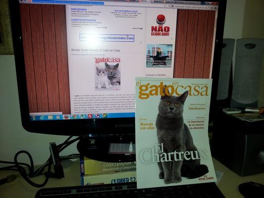 Recebido Revista El Gato en Casa