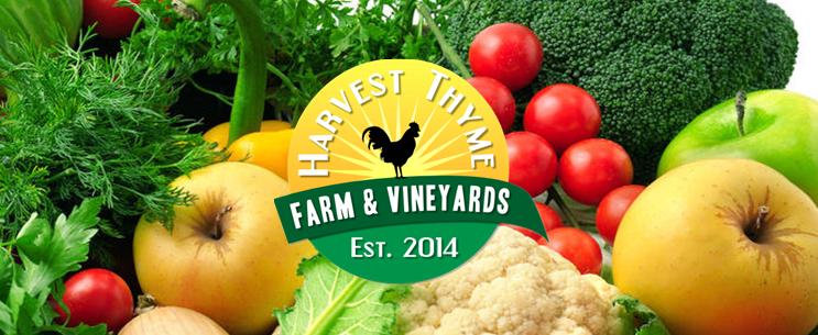 Harvest Thyme Farm