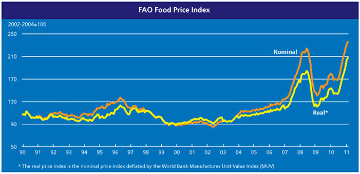 Food Price Index