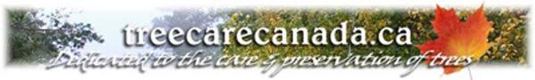 Tree Care Canada
