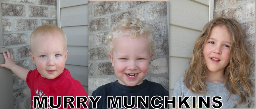 Murry Munchkins