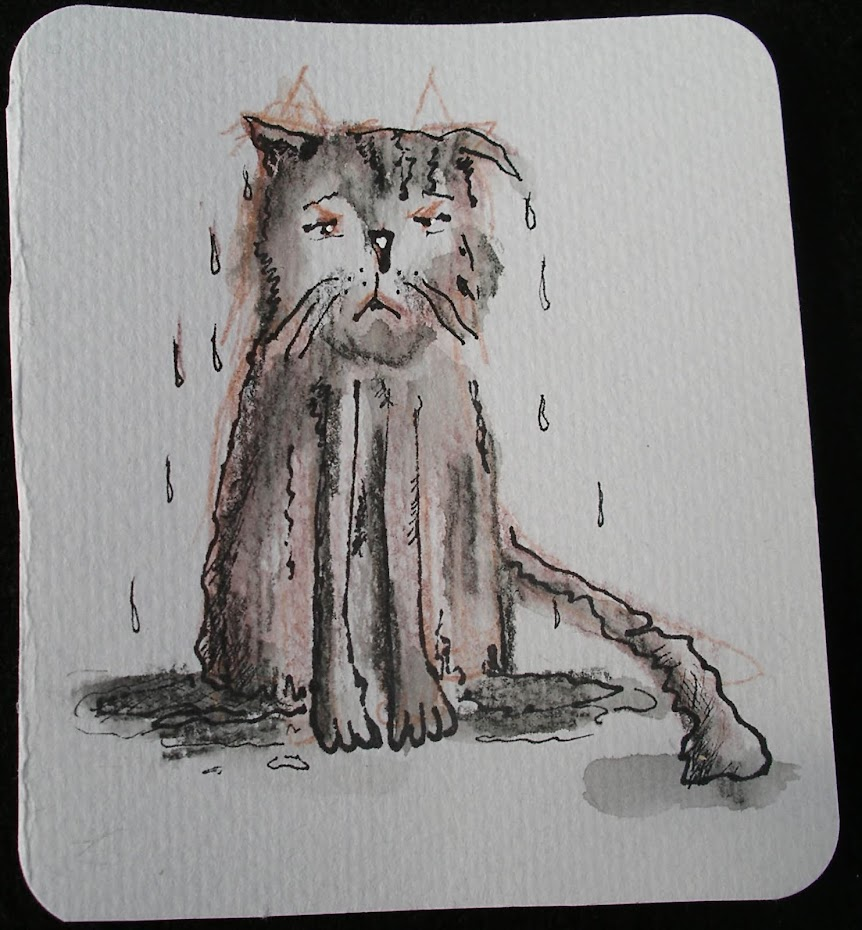 Kitty poems illustrations