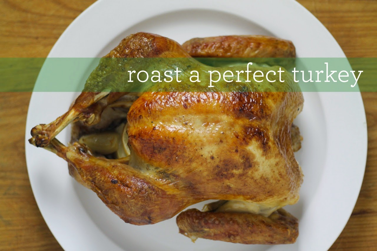 How to Roast the Perfect Turkey | Chris Loves Julia