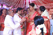Amala Paul Al Vijay wedding Photos-thumbnail-25