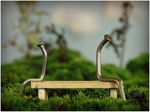 seni paku--Paku Juga Romantis! Sebuah Ungkapan Perasaan Manusia