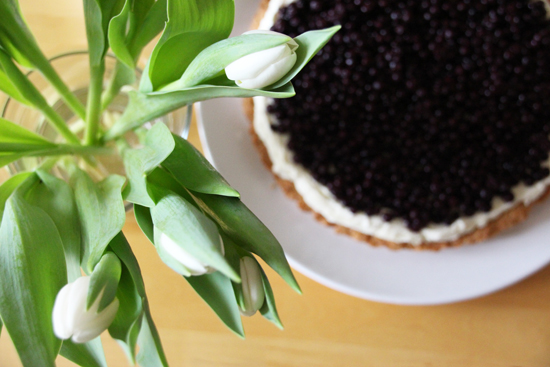 binedoro Blog, Heidelbeer-Tarte, Aus meiner Küche, backen