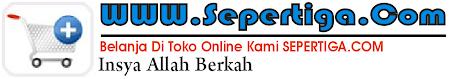 sepertiga.com