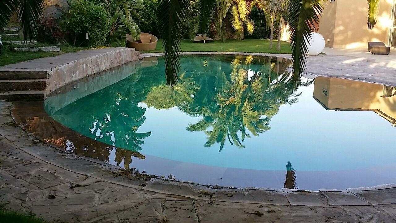 La piscina di agatino litrico piscina a fagiolo - Piscina a fagiolo ...