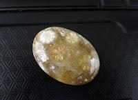 bentuk batu fosil