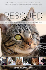 """RESCUED"" An Absolute Must Read!"