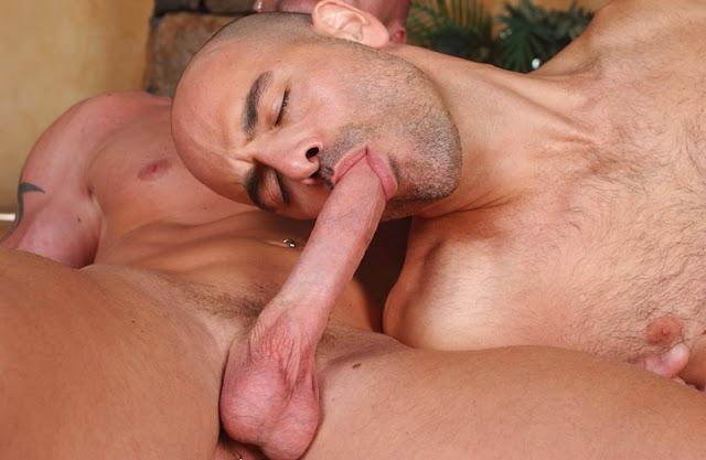 Nasty Muscley Gay Pornstar Hunk