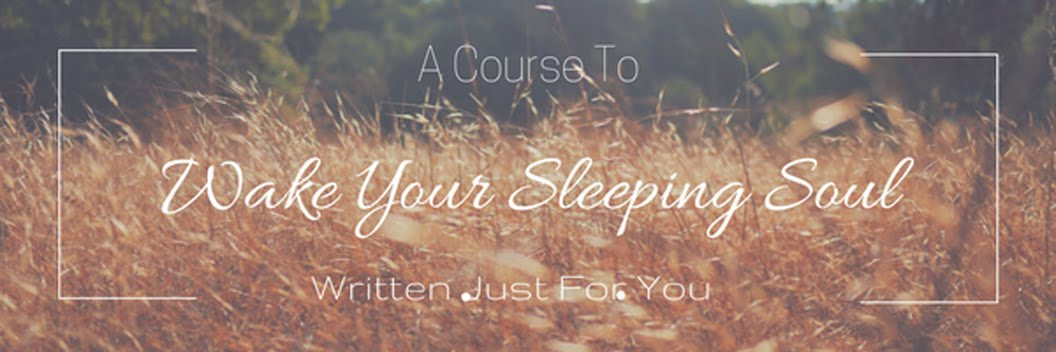 Waking Your Sleeping Soul Course