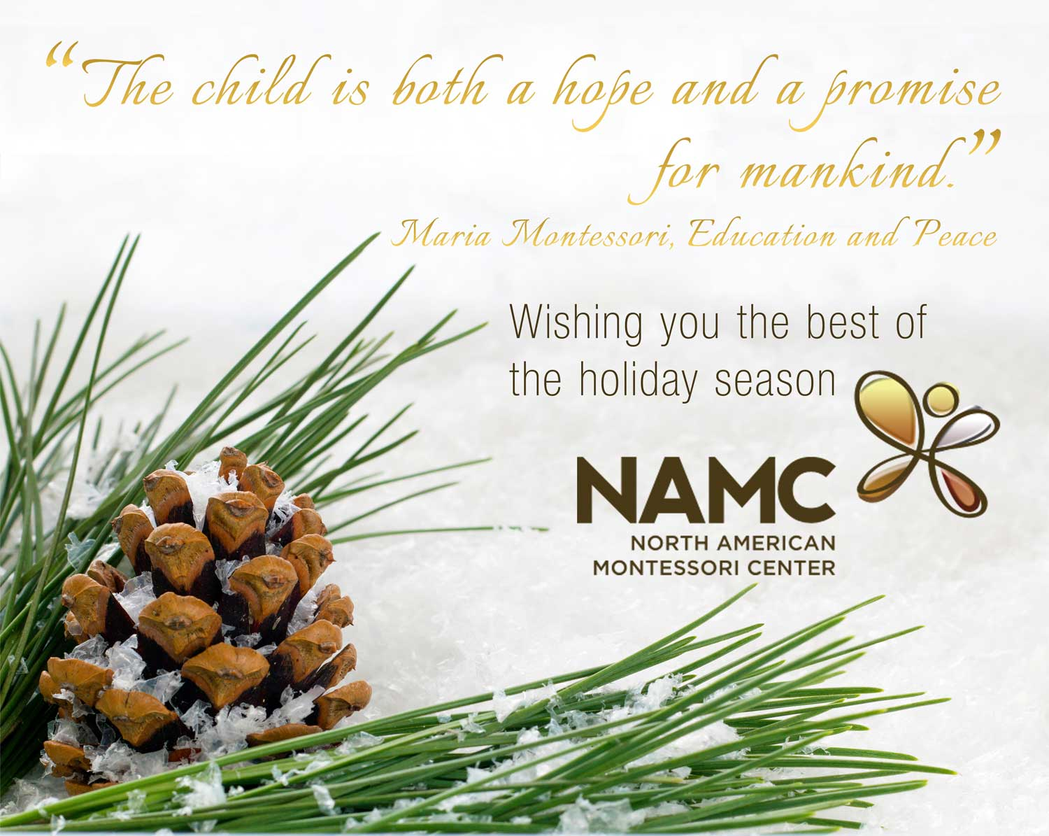 Merry Christmas and Warmest Holiday Wishes! - NAMC Montessori ...