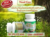 นีด-จี Need Gee