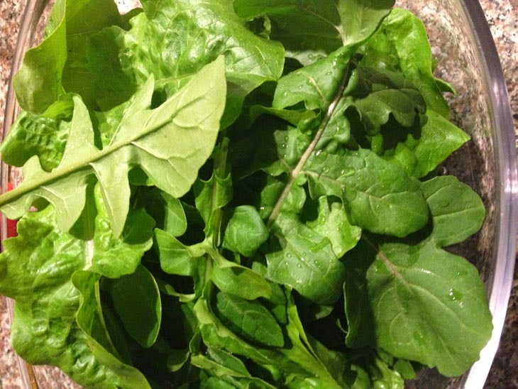 The arugula came first. - He Started With Some Boxes, 60 Days Later, The Neighbors Could Not Believe What He Built