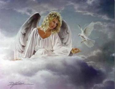 Descubra seu anjo