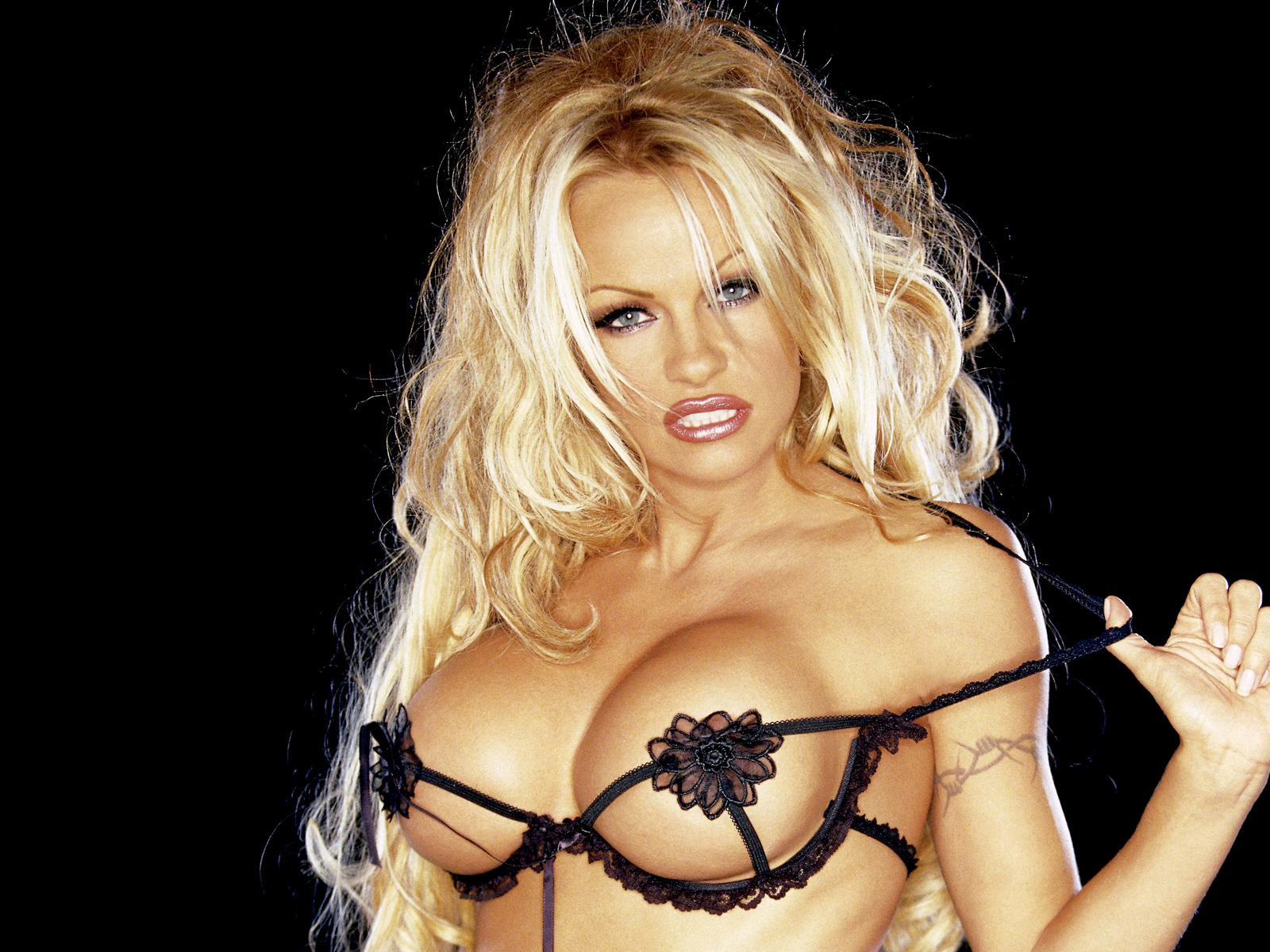 Pamela Anderson Search - XVIDEOSCOM - Free Porn Videos
