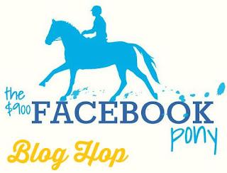 http://the900facebookpony.com/2015/11/11/blog-hop-top-5-horse-show-essentials/