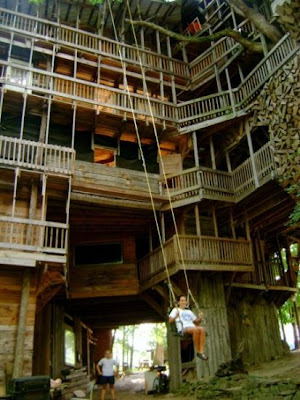 Benign Objects The World S Tallest Treehouse