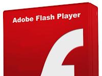 Adobe Flash Player 15.0.0.223 Offline Instaler