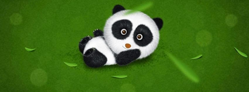 Une photo de couverture facebook panda
