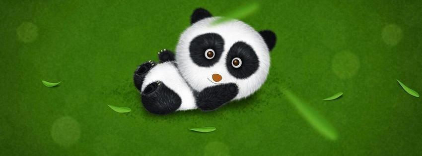 Une photo de couverture facebook panda