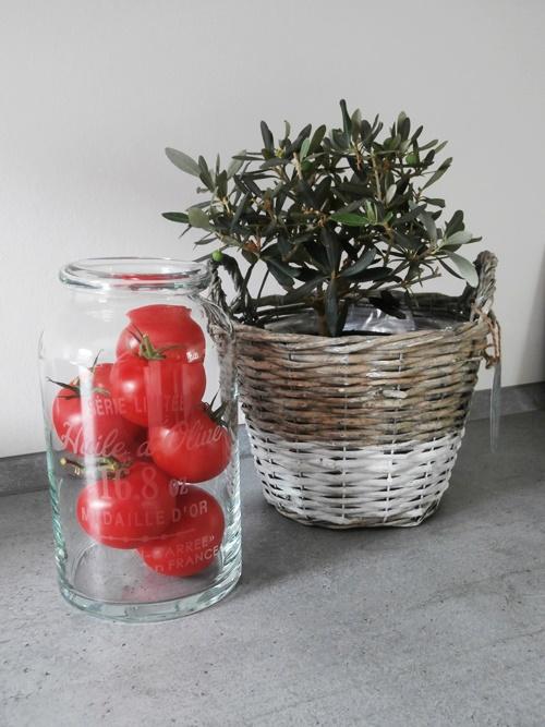 Olivenbaum Glas H&M Tomaten