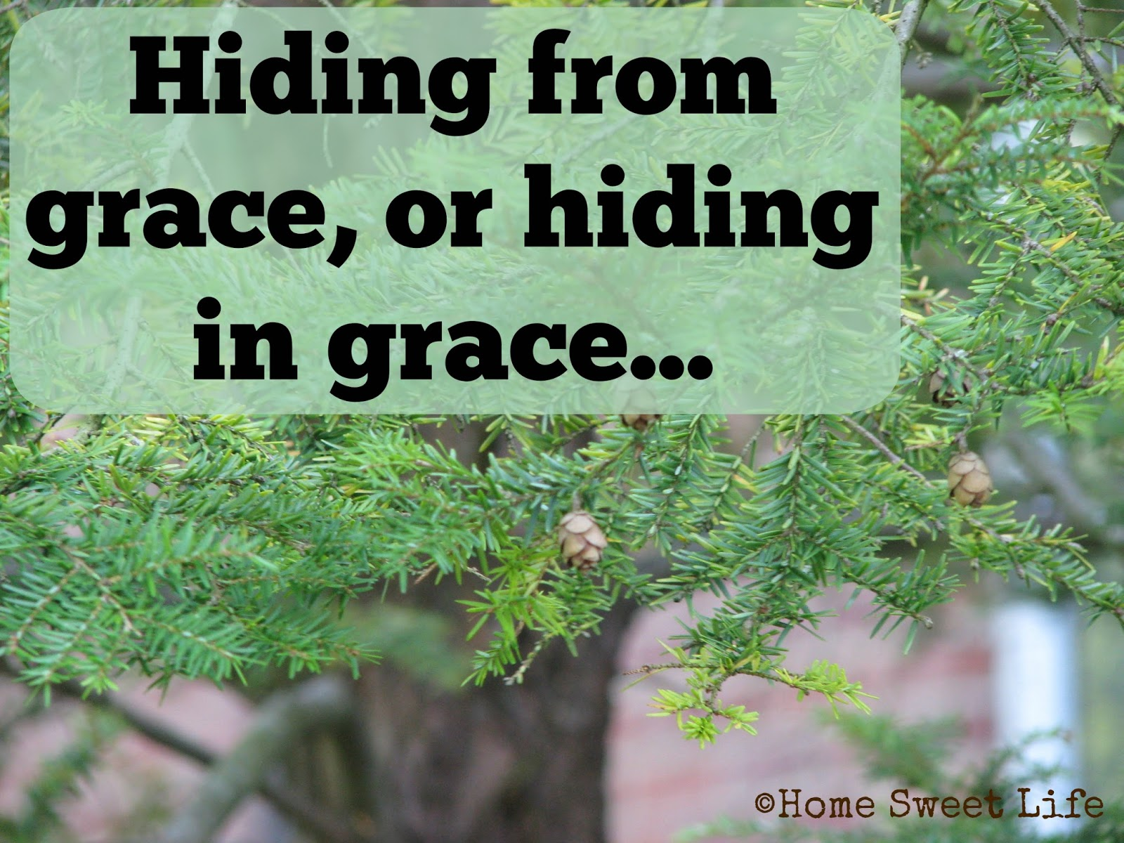 Hiding in grace