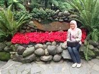:. Bandung 2013 .: