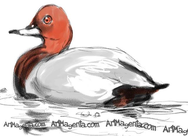 En fågelmålning av en brunand från Artmagentas svenska galleri om fåglar