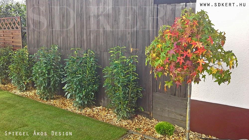 * Csináld magad kertépítés *: Élhető, Könnyen ápolható, tökéletes kert