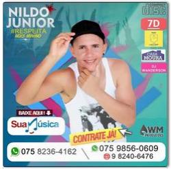 BAIXE O NOVO CD NILDO  JÚNIOR 2018