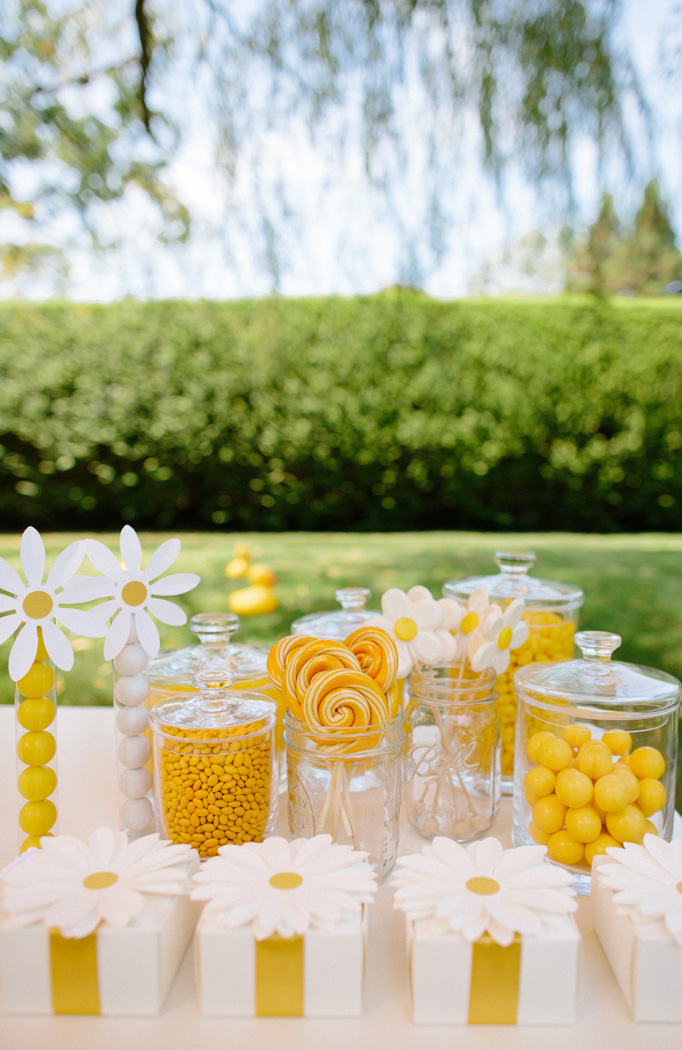 darcy miller, summer daisy party, candy bar, yellow daisies, summer