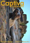 Revista de caza julio 2015
