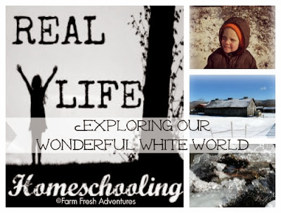 real life homeschooling for january