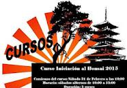Curso Iniciación Bonsai