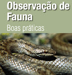 Observação de Fauna