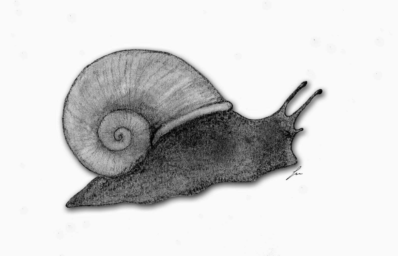 El Pakozoico, paleontología y frikismo: mayo 2014