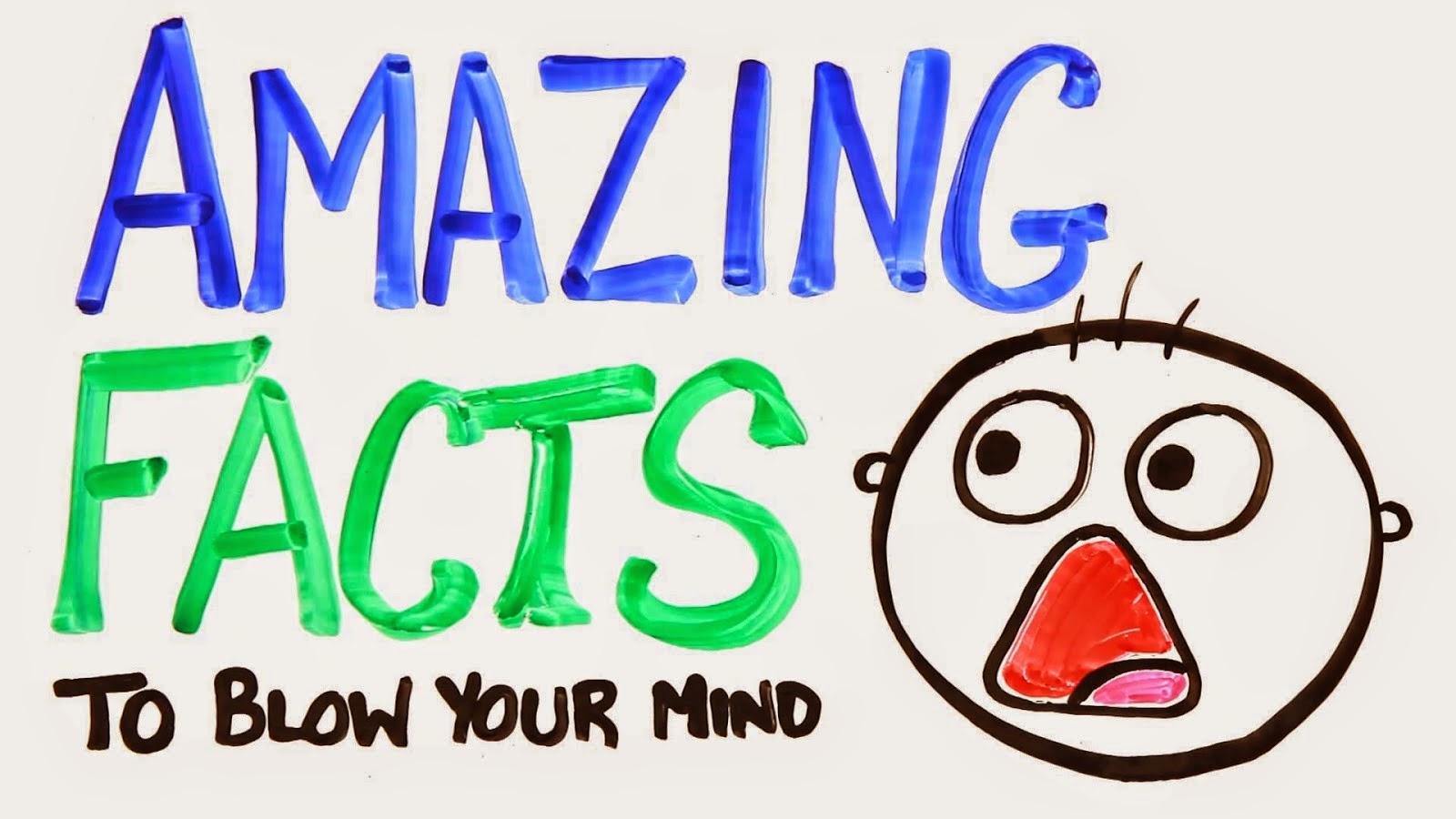 Sudut Fakta Fakta Menarik