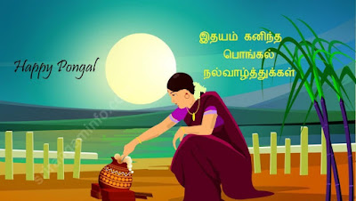 Pongal greetings for friends