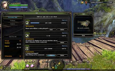 Dragon Nest - Secondary Skills