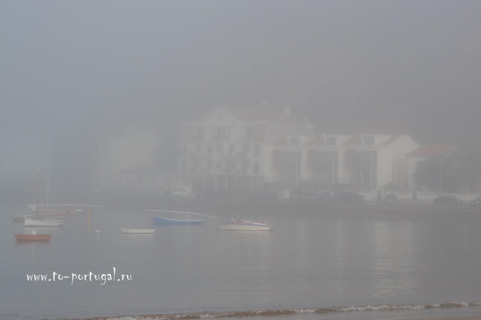 португальский климат, природа Португалии